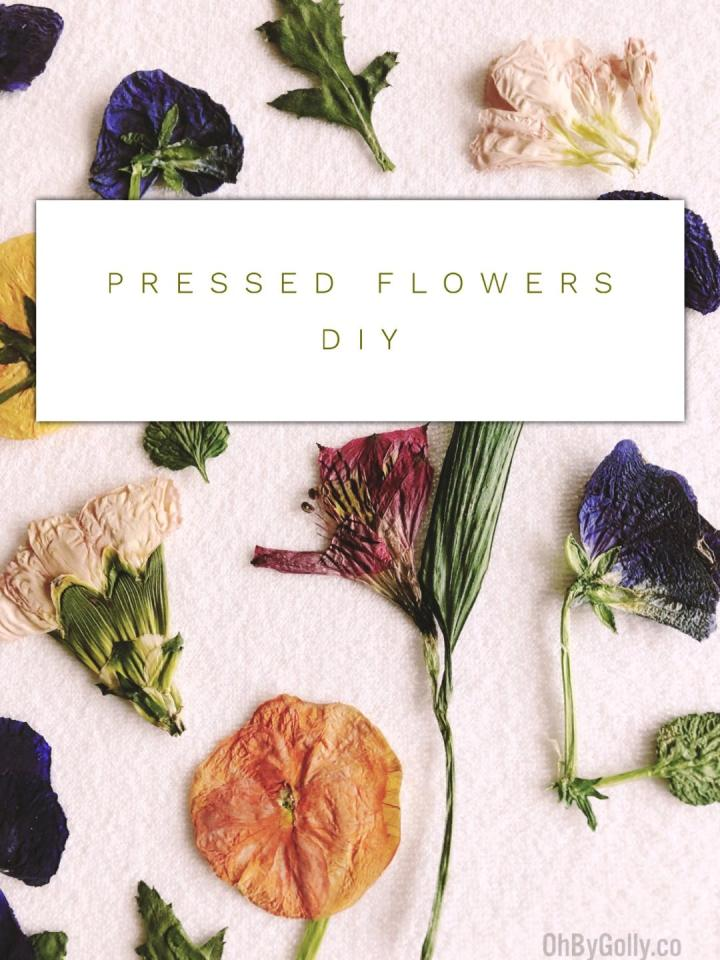 Pressed Flowers in 90 Seconds